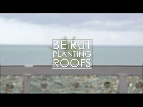 Beirut Planting Roofs