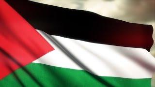 Filistin Bayrağı ᴴᴰ