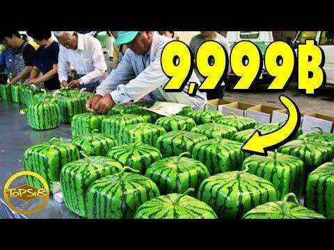 10 อาหารญี่ปุ่นสุดหรูและราคาแพงที่สุด (มีเฉพาะในญี่ปุ่นเท่านั้น!!) thumbnail