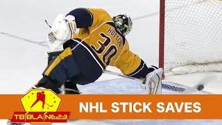 NHL Stick Saves