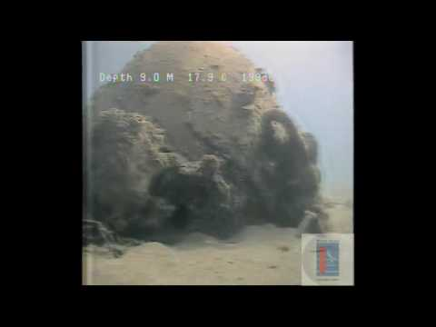 Sea bed Survey by SeaLion 2 ROV