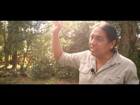 Robert Mirabal Sings: PT Originals