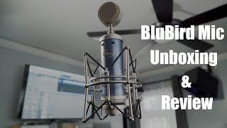 Unboxing & Review   BlueBird SL   MattViolinist