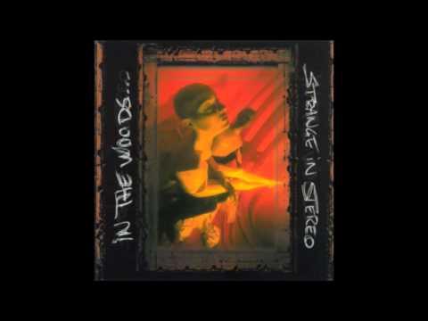 IN THE WOODS... - Strange In Stereo (Full Album) | 1999 | thumb