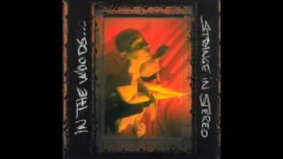 IN THE WOODS... - Strange In Stereo (Full Album) | 1999 |