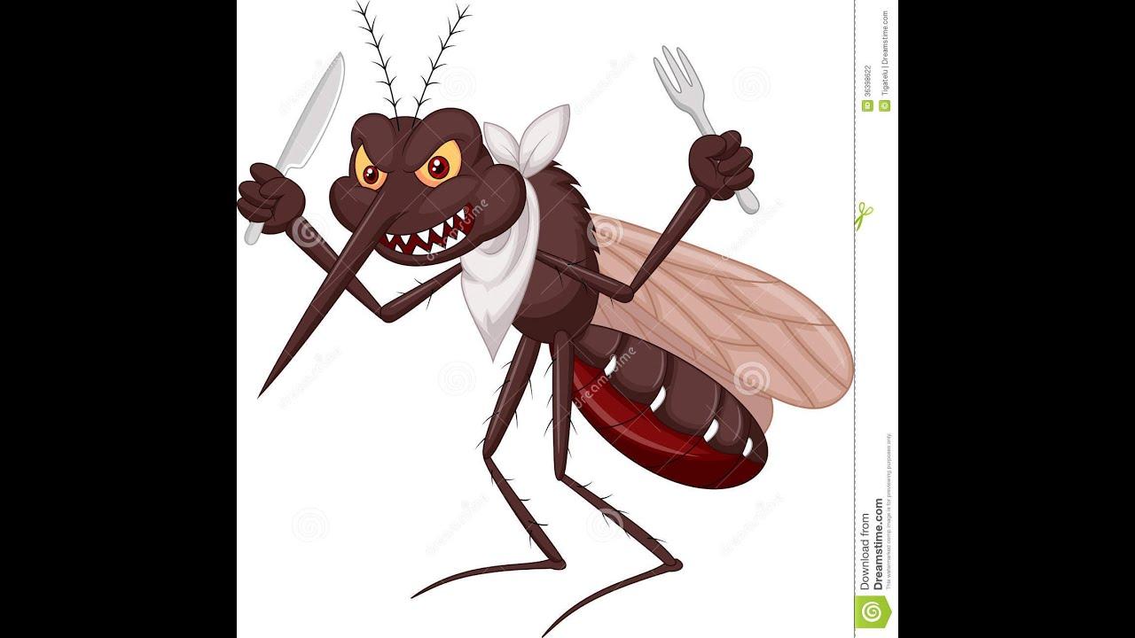 Zika dengue chikungunya metralhadora paródia anne