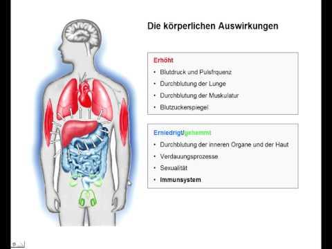 Auswirkungen von elektromagnetischer Strahlung auf Spermien