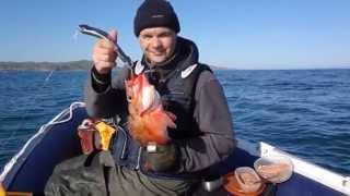 Рыбалка у мысов Сеть-Наволок и Погань-Наволок Баренцева моря