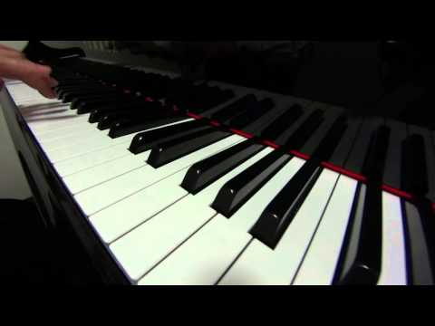 白い恋人たち/フランシス・レイ 13 Jours en France/Francis Lai  ピアノカバー