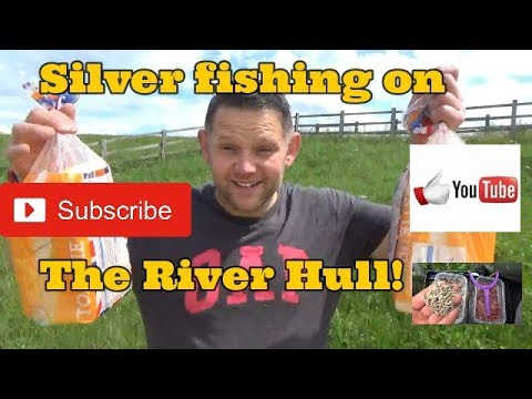 Roach And Perch Fishing On The River Hull (Wilfholme)