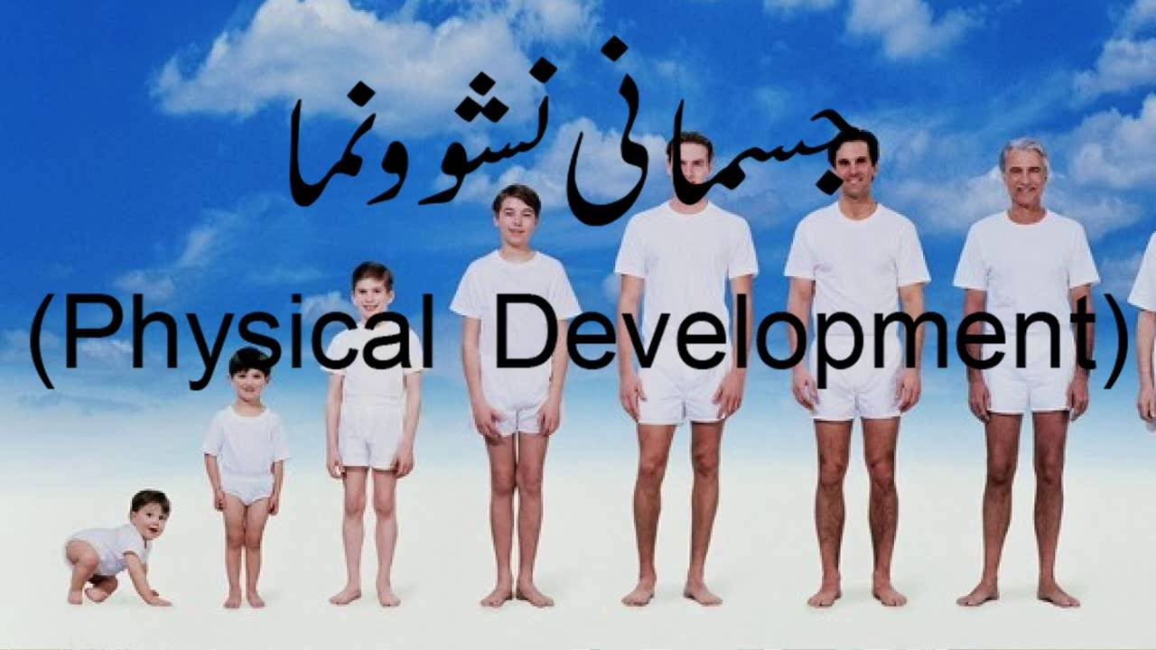 physical development Know what to expect with this overview of the ages & stages of child development this is also a stage of rapid physical and intellectual development preparing.