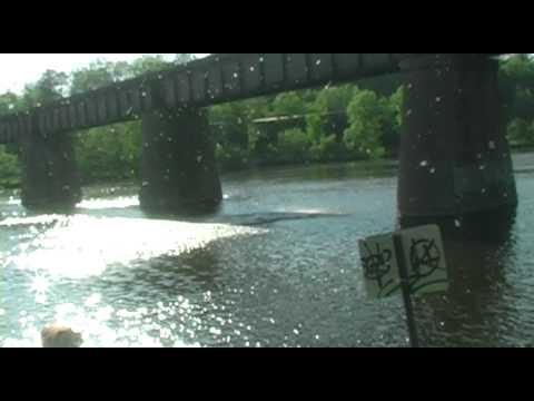 Ann Arbor Jumps Bridge