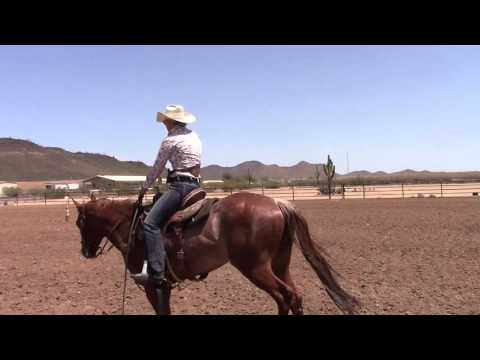 """Kenda Lenseigne Training Drill on horse called 'Noodle"""""""