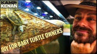 build-a-starter-tank-for-baby-turtles-terrapin-kamp-kenan