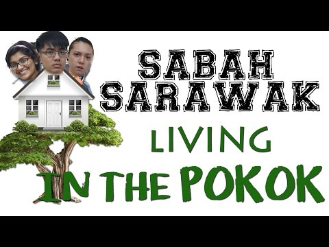 GET IT RIGHT (Ep3) | Sabah & Sarawak, Living in the Pokok? | AdamShamil