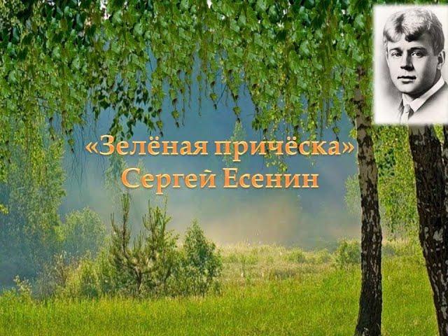 Изображение предпросмотра прочтения – ОксанаФедотова читает произведение «Берёзка (Зелёная причёска, девическая грудь…)» С.А.Есенина
