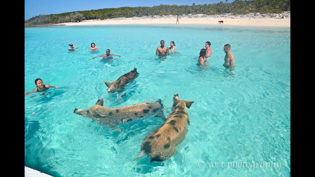 Great Exuma Beach Resort