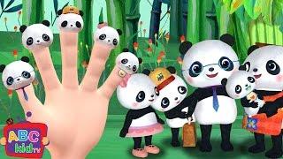 Finger Family (Panda Version)   CoComelon Nursery Rhymes & Kids Songs