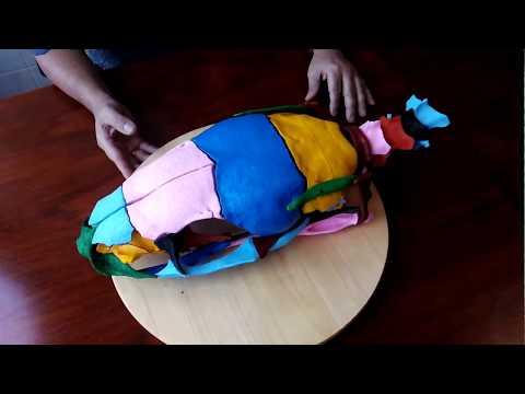 SNAKE SKULL ANATOMY-3D PRINTING-PROSYMNA GREIGERTI