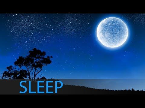 8 Hour Dream Music: Relaxing Deep Sleep Music, Meditation Music, Sleep Meditation ☯1223
