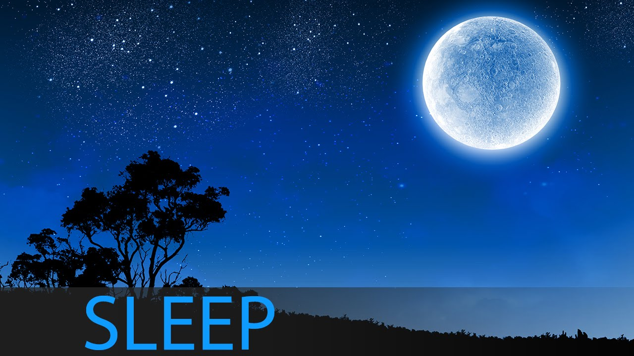 8 Hour Deep Sleep Music, Sleeping Music, Relaxing Music Sleep, Delta Waves,  Sleep Meditation, ☯1223