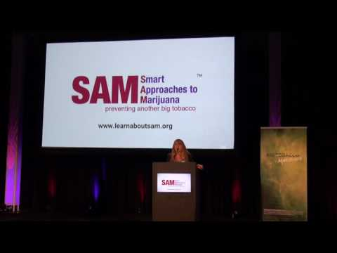 Merilee Fowler - SAM Summit 2017