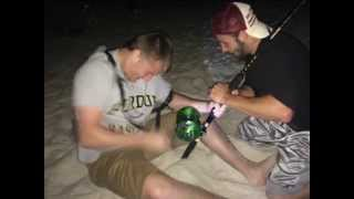 monster sharks caught from the beach panama city beach fl