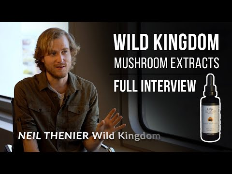 complete-guide-to-medicinal-mushrooms---full-interview-with-wild-kingdom
