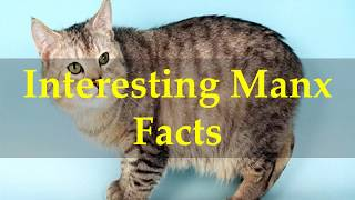 Interesting Manx Facts