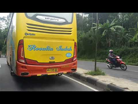 Suara Jet ala Bus Rosalia Indah NL 515