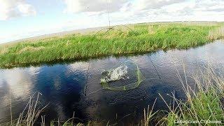 Рыбалка в ручье на подъёмник. Рыбка все же есть. Подводная съёмка