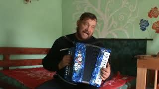Любимые Советские песни из мультиков под гармонь!!!