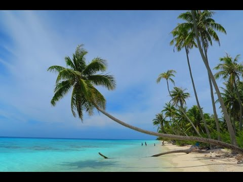 FAKARAVA ATOLL - French Polynesia: a 60 Second Tour
