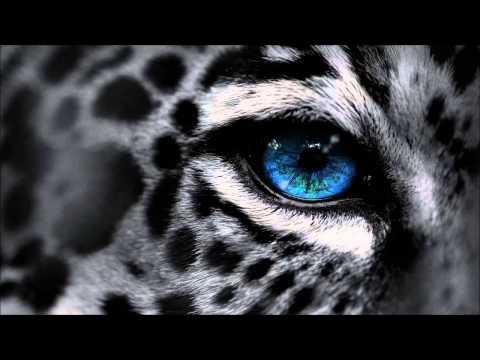 Selectracks - Black Opium ( Epic Female Vocal Drama )