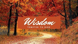 Wisdom - Tempted to Hide