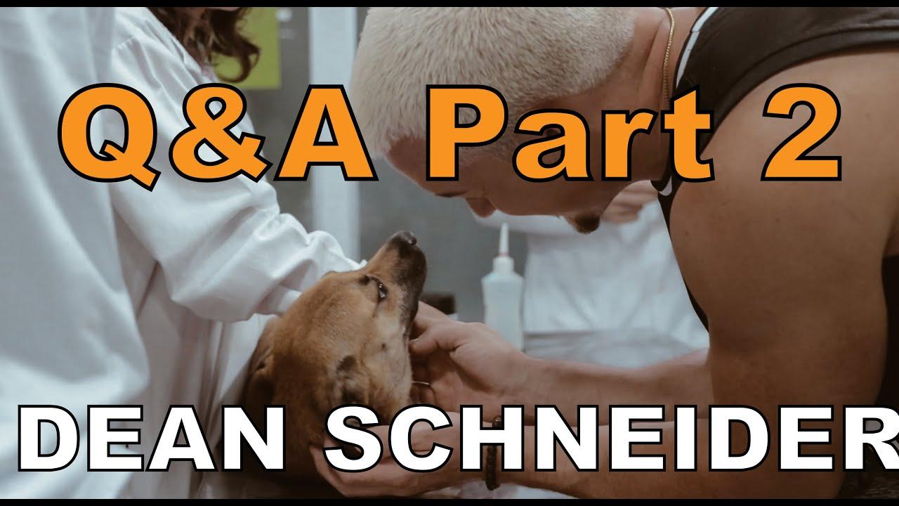 Dean Schneider Q&A - Part 2