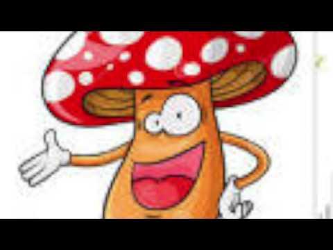 Vidéo Doublage animation   Le champignon   Charlotte Guedj 0664951112