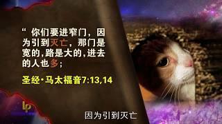 预言的地标  圣经中的地标  第20集 立志忠心 Landmarks of Prophecy