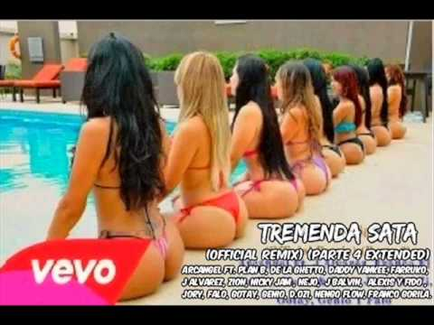 Tremenda Sata (Remix 4 Extended) - Arcangel Ft. Daddy Yankee Y Mas  (Prod. DJ Luian & Noize)