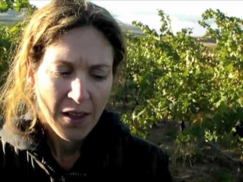 Covey Run Winery
