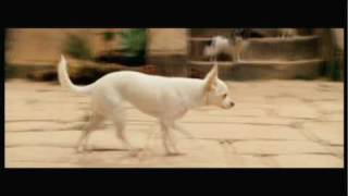 Beverly Hills Chihuahua - Temple of the Dog Clip
