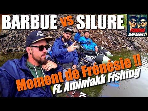 """Quand la PÊCHE devient FACILE """"SILURE en Châsse"""" !! Ft. Aminiakk Fishing.."""