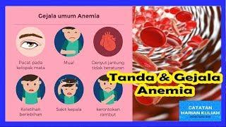 Cara Mengatasi Anemia : Penyebab dan Cara Mencegah Nya.