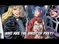 Who Are The Birds of Prey?