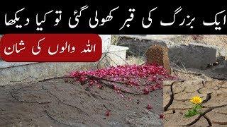 Allah ki shan || Aik buzorg  ki qabar me phool || urdu islamic story || PAk Madina.