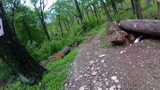 Trexler Game Preserve - Half Pipe 1 Downhills