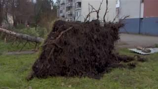 """Teslić: Oluja nanijela štetu """"Kardijalu"""" i """"Destilaciji"""" – 12.12.2017."""