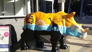 БРИСБЕН  глазами ЖЕНЩИНЫ  Австралия Brisbane Queensland Australia(Сегодня мы побываем с вами в Брисбене - столице австралийского штата Квинслэнд, проедем по улицам города,..., 2016-06-15T23:01:56.000Z)