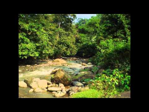 A Great Journey From Ruma  To Bandarban by Boat