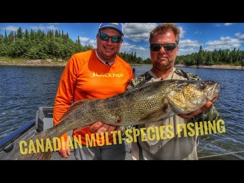 Manitoba Fishing Camp With Great Multi-Species Fishing Opportunities